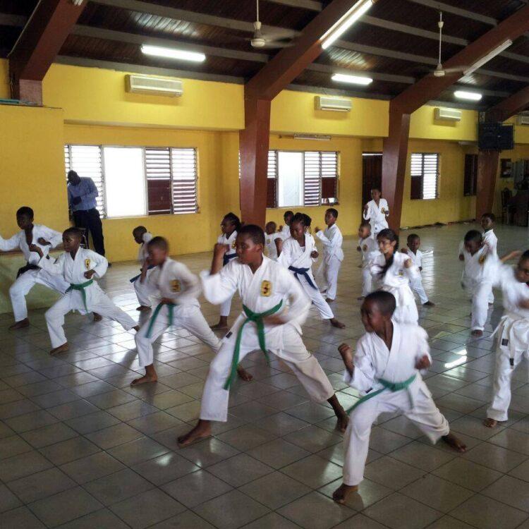 pmps karate